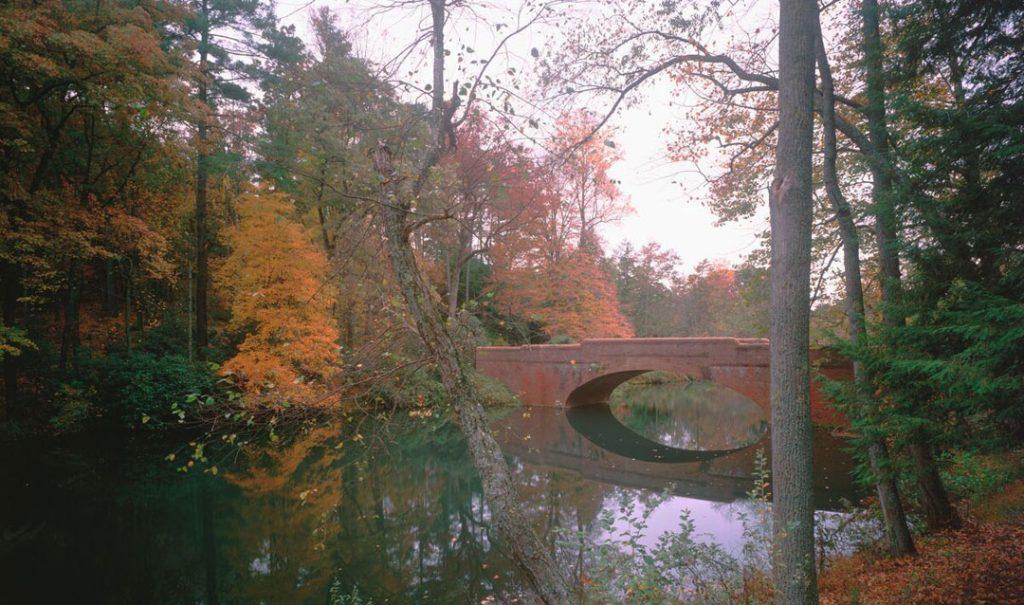 Bass Pond Bridge in Fall at Biltmore
