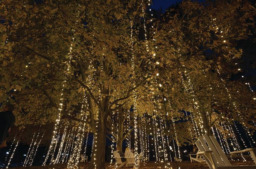 Christmas Tour At Biltmore